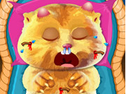 Play Talking Ginger Care game