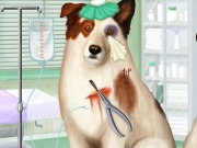 Doctor For Dog With A Blog Game