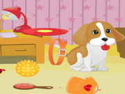 Play Puppy Room Cleaning game