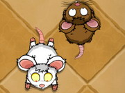Play Tap The Rat game
