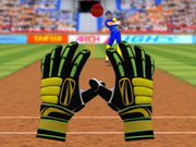 Play Cricket Fielder Challenge game
