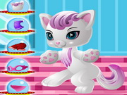 Play Power Princess Kitty Dressup game